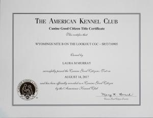 Bolo AKC certificate