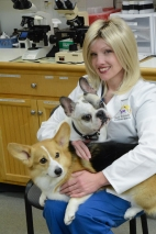 veterinary photo_FrodoRiver2 (2 of 3)